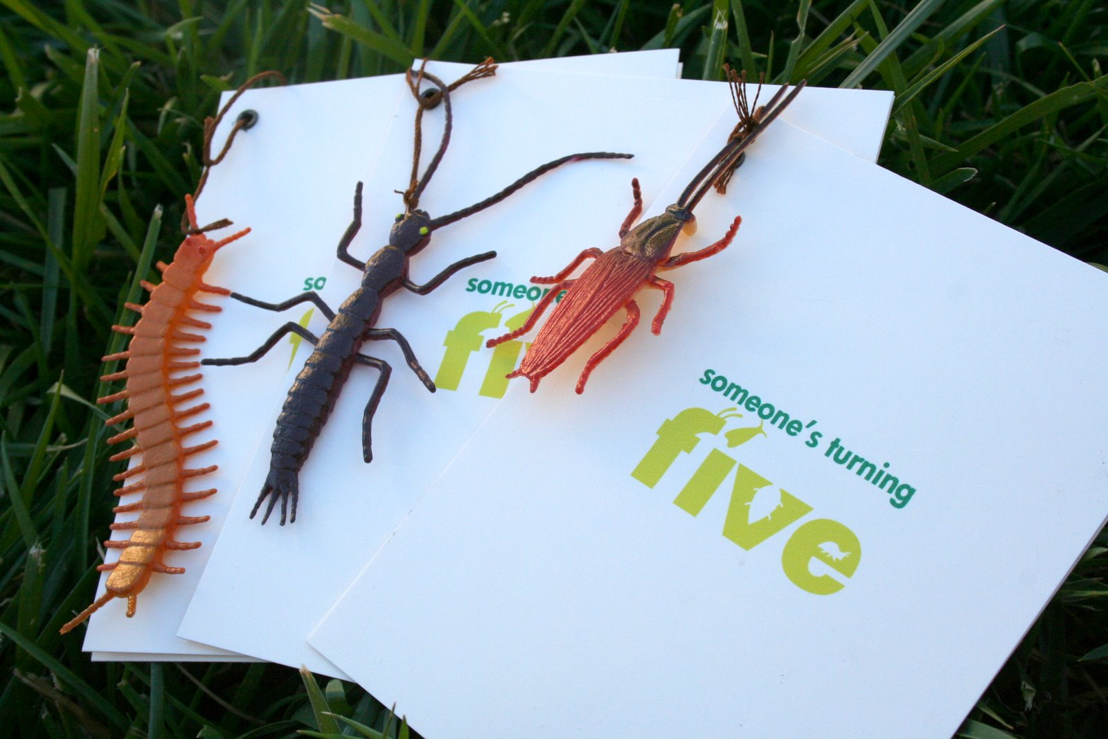 Creepy Bug Birthday Invitations | Paper and Thread Studio Blog